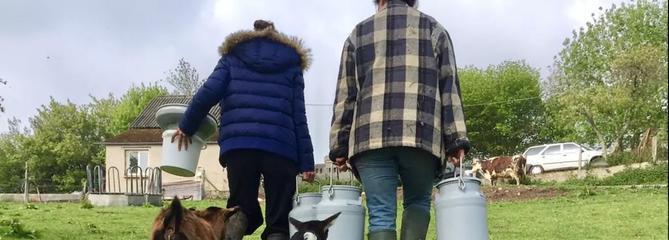 Des séjours en immersion à la ferme pour aider les agriculteurs