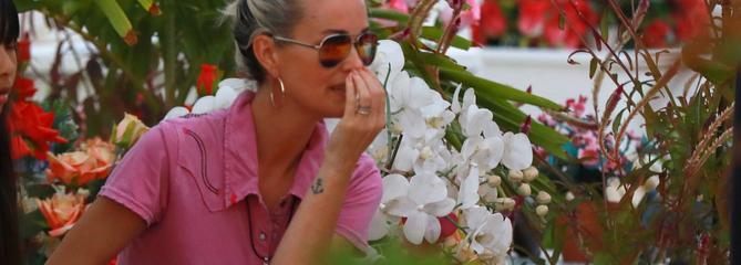 Laeticia Hallyday se recueille sur la tombe de Johnny à Saint-Barthélemy, un an après sa mort