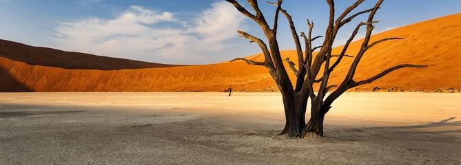 5 lieux à visiter lors d'un voyage en Namibie