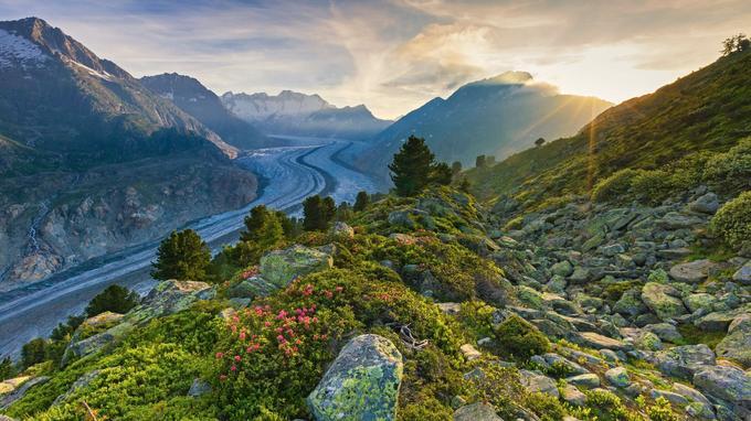 Le glacier d'Aletsch, dans le canton du Valais, est le plus grand des Alpes. Il est entouré de 9 sommets de plus de 4 000 m d'altitude.