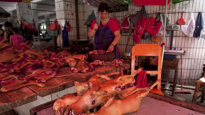Une commerçante découpe en morceaux des chiens sur un marché de Yulin, en Chine.