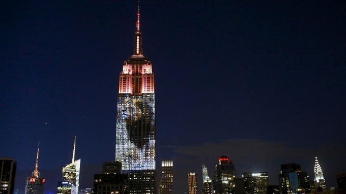 À New York, l'Empire state building a rendu hommage à Cecil.