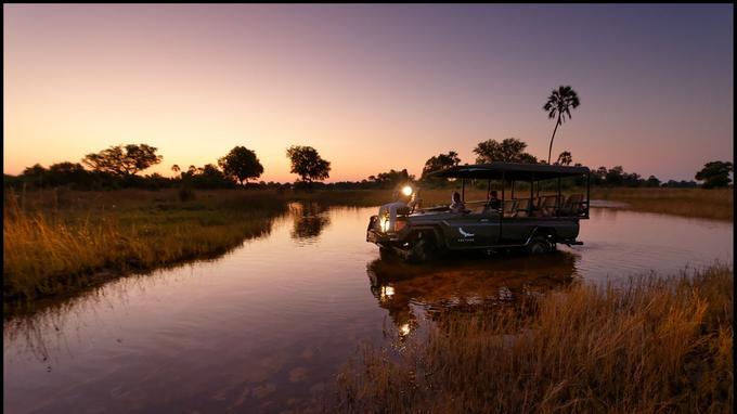 Une fin d'après-midi australe au coeur de l'Okavango.