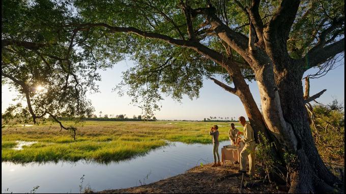 Les hôtes du Sandibe ont accès à la concession privée de Chitabe: 28 000 hectares de nature inviolée accolés à la réserve de Moremi.