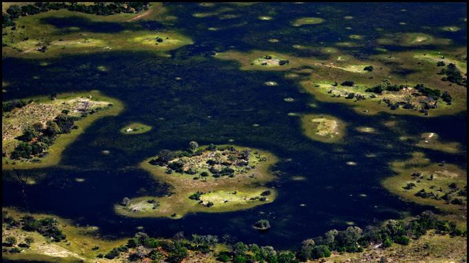 L'arrivée en avion-taxi permet de prendre toute la mesure de ce fabuleux labyrinthe d'îles et de chenaux, qui se déploie sur près de 15 000 km2 au nord-ouest du Botswana.