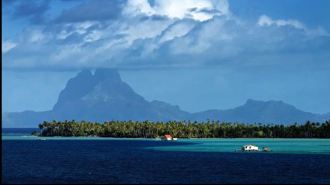 Tahiti est l'une des 118 îles qui constituent la Polynésie française. Un paradis terrestre perdu au milieu du Pacifique..