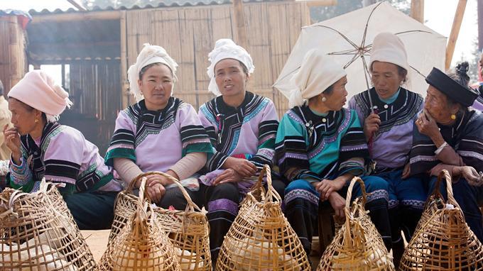 Des femmes de l'éthnie hani venues vendre leurs poules au marché de Pao Hua, un village proche des rizières en terrasses de Samaba.