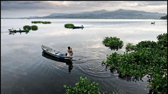 Le lac Suchitlán, que l'on sillone en bateau pour une balade romantique ou orntithologique.