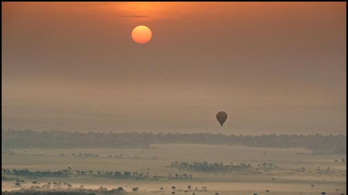 Depuis 2006, la Sky Ship Company est l'un des deux opérateurs qui proposent le survol du Masai Mara en ballon. Départ à l'aube pour une heure de féerie au-dessus des plaines nimbées de brumes.