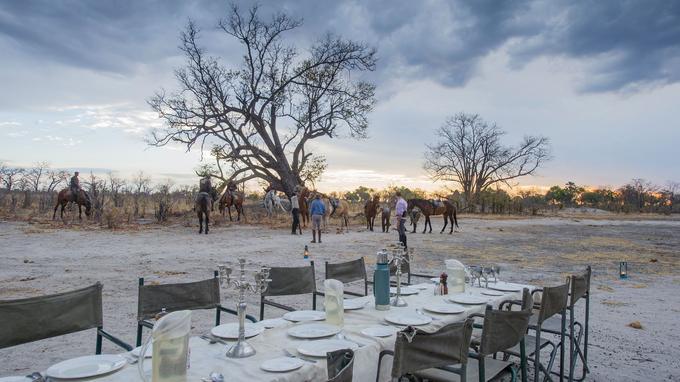 Le personnel du Macatoo Camp a dressé la table du dîner en pleine brousse au milieu des arbres squelettiques et des termitières géantes. Un final féerique pour une journée au grand galop.