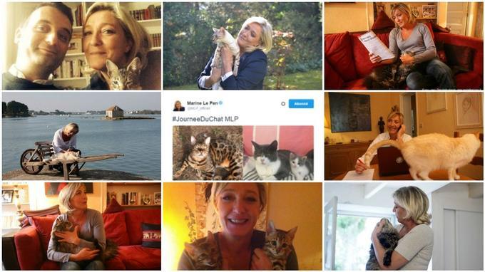 Florilège des nombreuses photos publiées par Marine Le Pen avec des chats (Montage: @LeScan)