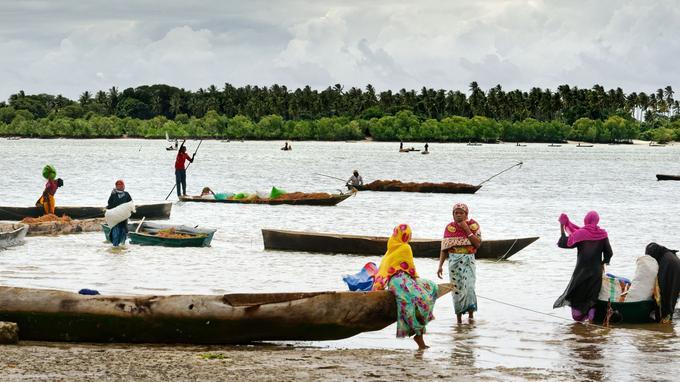 Instant de répit dans la récolte et le séchage des algues, travail harrassant, et essentiellement dévolu aux femmes.