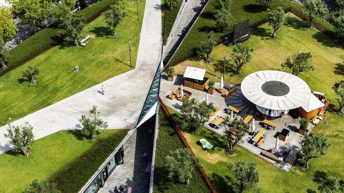 Passage obligé! Le passeio dos Clérigos, sa galerie commerçante et son jardin planté d'oliviers vus de la torre dos Clérigos, monument emblématique du centre historique.