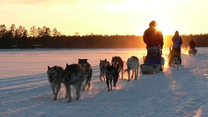 A la tombée du jour, en Laponie. © 66nord