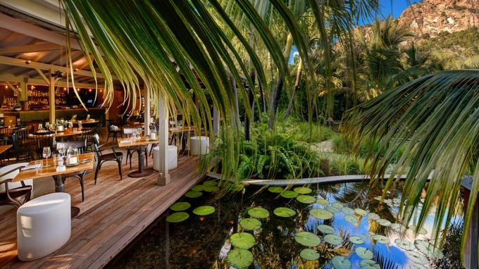 Dans un jardin tropical, Le Tamarin sert une cuisine française avec des touches délicieusement antillaises.