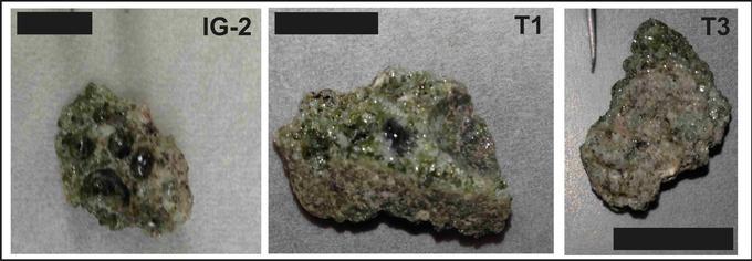Différents échantillons de trinite analysés par les chercheur. <i> (Crédits photo: Day et al. Sci. Adv. 2017;3:e1602668)</i>