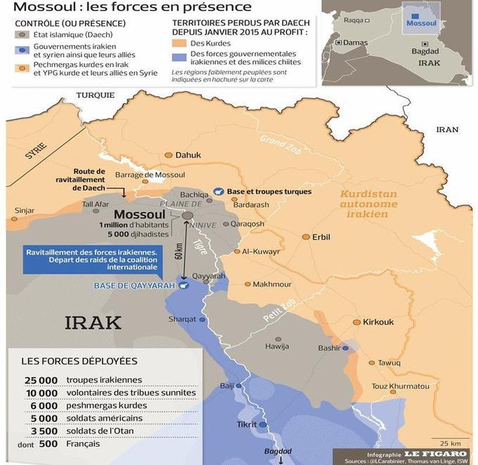 L'état des forces en présence lros du lancement de l'offensive en octobre 2016.
