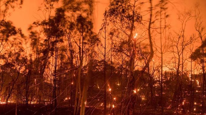 L'incendie s'est propagé dans des quartiers résidentiels près d'Oroville, en Californie. (Crédit photo: Josh Edelson / AFP)