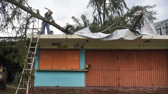 Un homme s'attèle à enlever le tronc d'un arbre tombé sur un toit, jeudi.