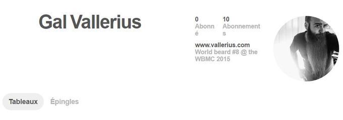 Capture d'écran du compte Pinterest de Gal Vallerius.