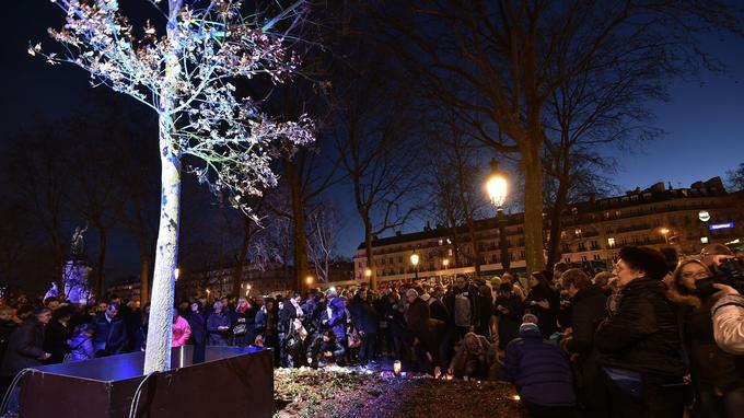 Le «chêne du souvenir» lors de son installation, le 10 janvier 2016.