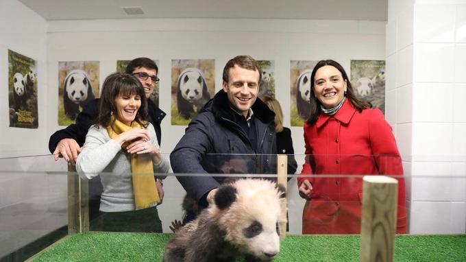Emmanuel Macron samedi au zoo de Beauval.