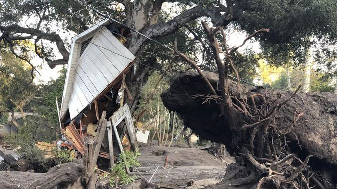 A côté d'un arbre déraciné, un cabanon emporté.