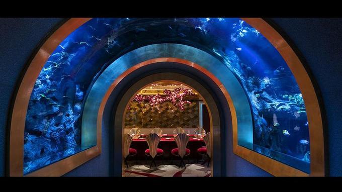 Ce tunnel mène vers l'une des salles à manger du Al Mahara.