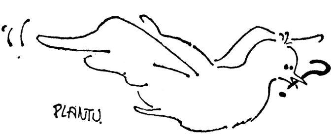 «Colombe de la Paix». Plume et encre de Chine sur papier, premier dessin de Plantu publié dans «Le Monde» daté 1 et 2 octobre 1972.