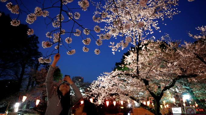 Pour fêter l'arrivée du printemps, de multiples rassemblements sont prévus dans les prochains jours.
