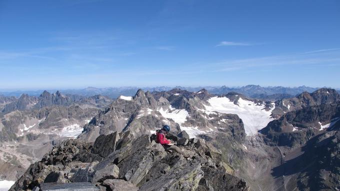 Au sommet du Piz Linard dans les Alpes suisses, à 3410 mètres d'altitude, les botanistes ont identifié 16 espèces de plantes, là où une seule avait été observée en 1835.
