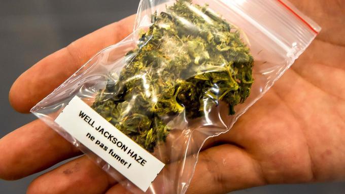 Pour respecter la loi, le magasin ne peut pas vendre d'herbe «à fumer». Les vendeurs conseillent plutôt l'infusion.