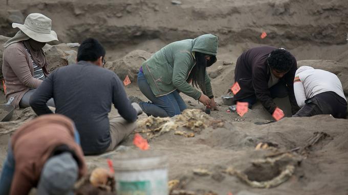 L'équipe d'archéologues lors des fouilles du site de Pampa La Cruz.
