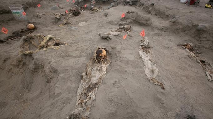 Au total, 56 restes d'enfants ont été exhumés du site.