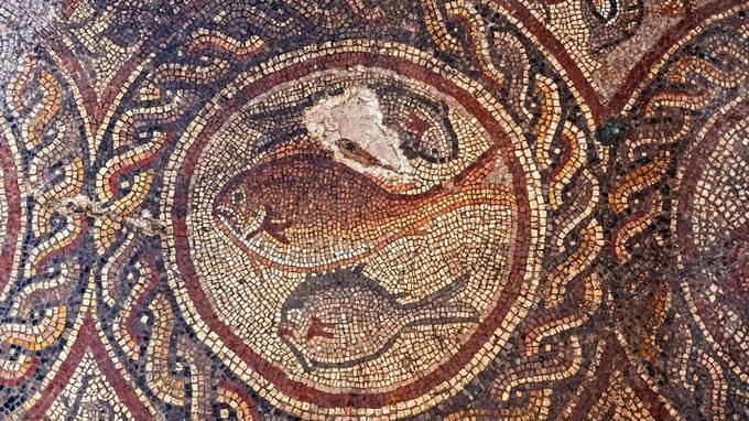 L'une des mosaïques représentants des poissons retrouvées à Lod dans les décombres d'une maison de l'époque romaine .