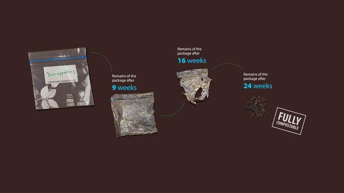 Le cycle de décomposition d'un sachet Tipa.