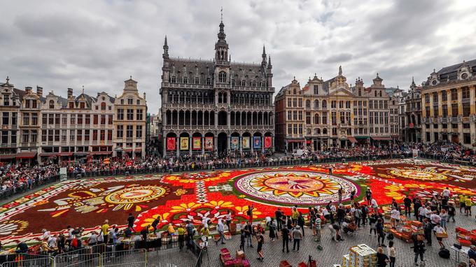 Plus de 500.000 fleurs composent le tapis.