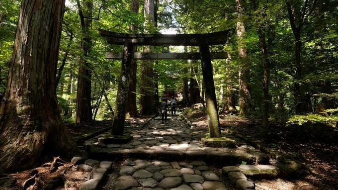 Un des sentiers qui serpentent en forêt dans la région de Nikko, ici à l'approche du temple de Takino.