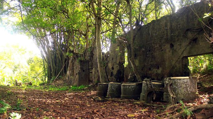 La sucrerie Soulou à M'Tsangamouji, sur l'île de Mayotte, a été ravagée par un cyclone en 1898.