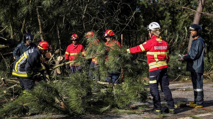 Des pompiers dégagent la route dimanche. Plus d'un millier d'arbres ont été abattus par les vents violents.