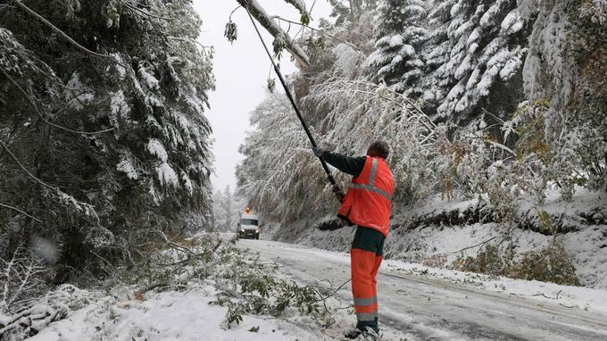 Des agents coupent certaines branches d'arbre, lundi en Auvergne, pour éviter leur chute sur les routes.
