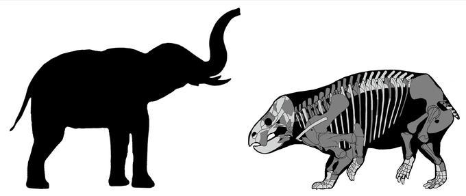 Le <i>Lisowicia bojani</i> est aussi gros qu'un éléphant.