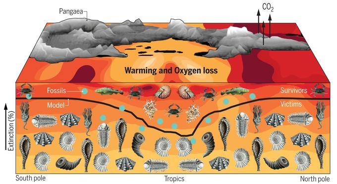 La crise du Permien est la plus grave qu'ait connue notre planète avec la disparition 96% des espèces.