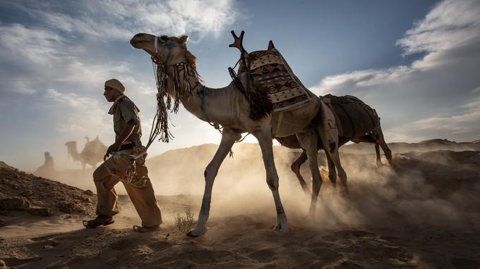 Les soldats chevauchent rarement leur monture pour mieux lire les traces dans le sable.