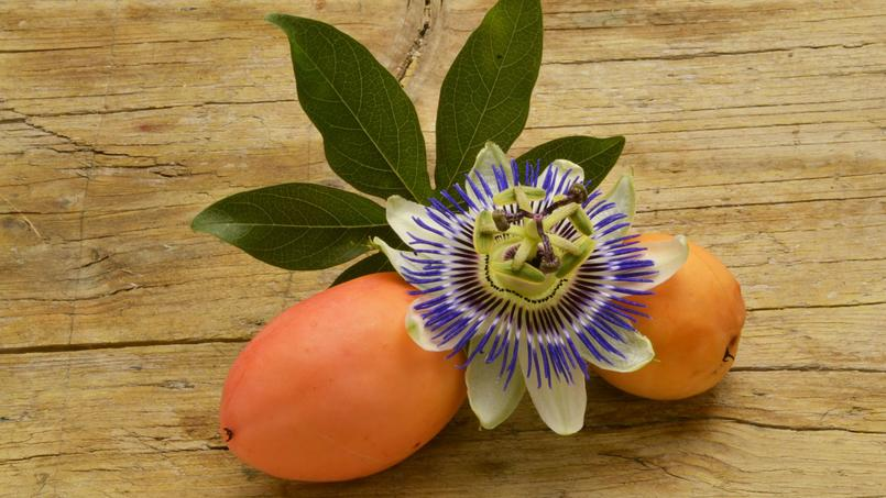Is the fruit of passionflower edible?