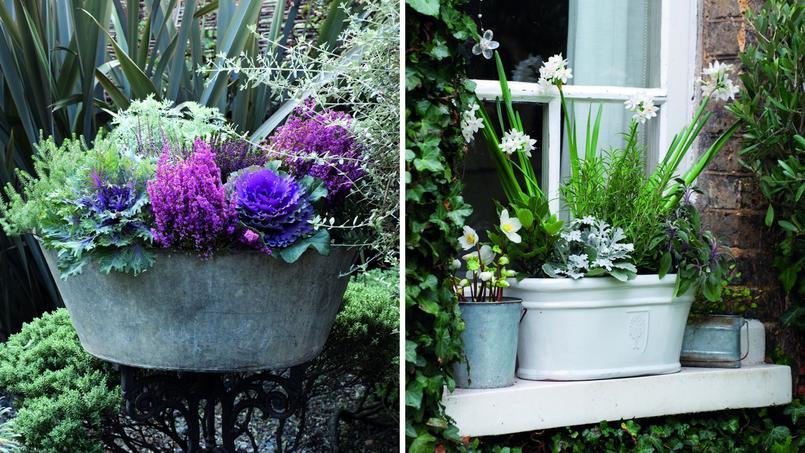 des jardini res fleuries et color es m me en hiver. Black Bedroom Furniture Sets. Home Design Ideas