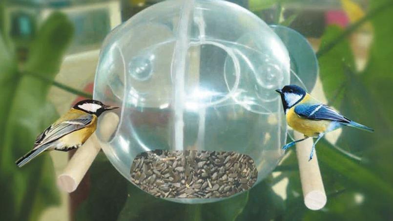 une mangeoire transparente pour voir les oiseaux festoyer. Black Bedroom Furniture Sets. Home Design Ideas