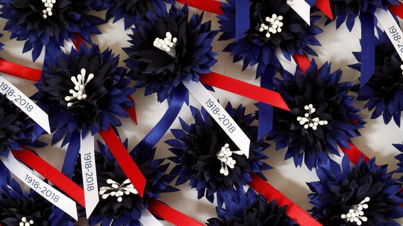 11 novembre : le Bleuet, cette fleur symbole, qui poussait sur les champs de bataille
