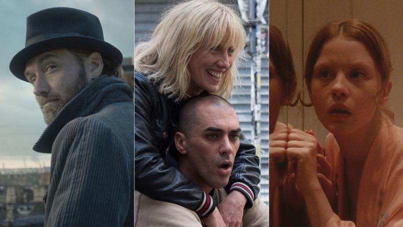 Les Animaux fantastiques, Les Chatouilles, Suspiria... Les films à voir ou à éviter cette semaine