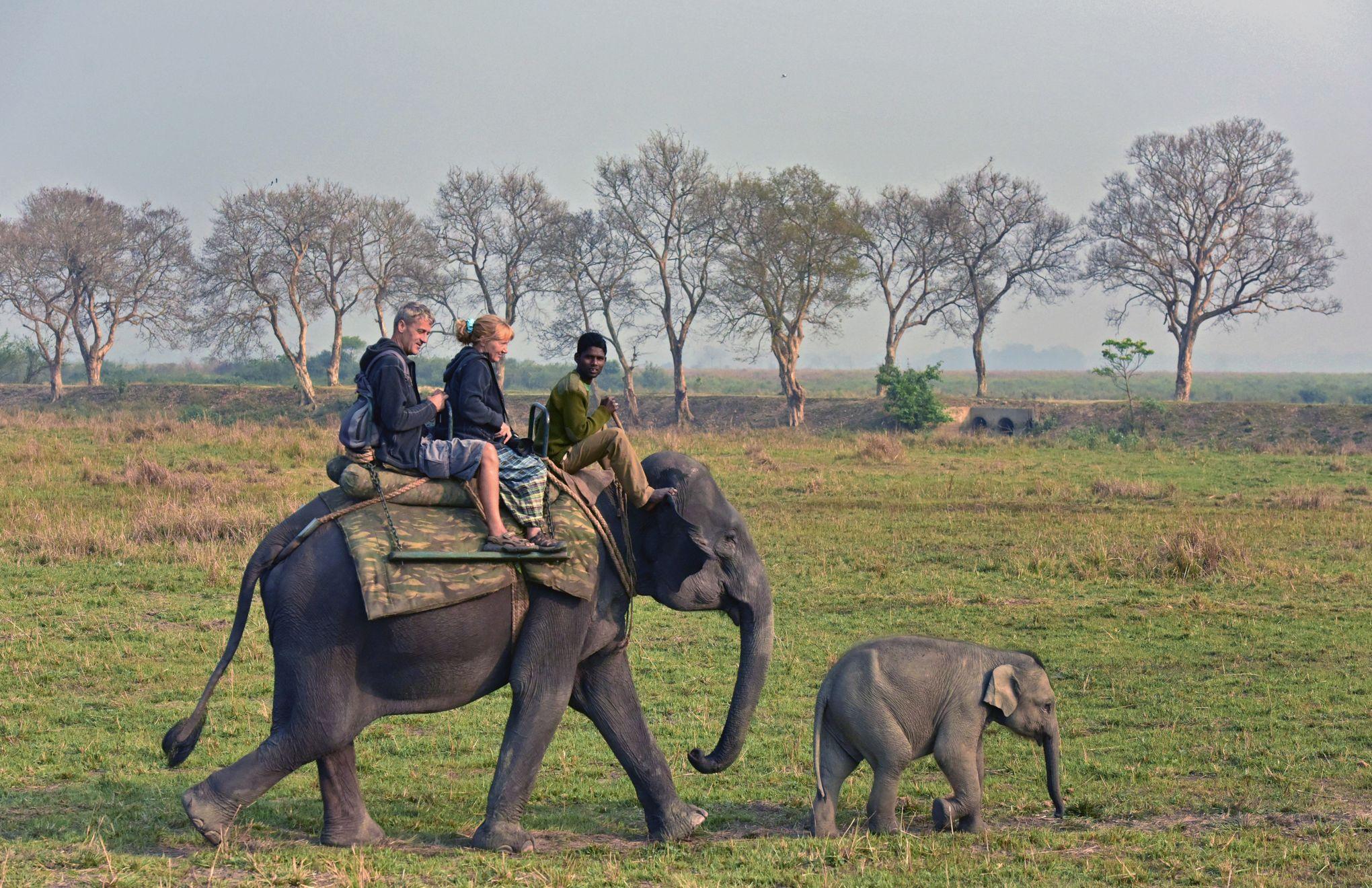 Conseils pour sortir avec une femme plus âgée journal éléphant